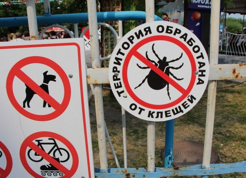 Tegen teken behandeld terrein in Tomsk, in de strijd tegen tekenencefalitis