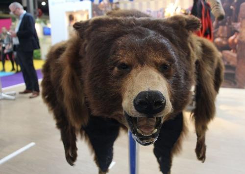 geschoten beer/berenvel als 'fout' souvenir